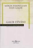 Galib Divanı - Hasan Ali Yücel Klasikleri