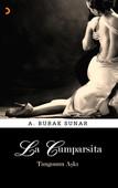 La Cumparsita Tangonun Aşkı