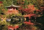 Educa Puzzle Daigo-Ji Temple, Kyoto-Japan 15529 1500'Lük