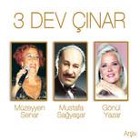 3 Dev Çınar  Arşiv 3 CD BOX SET