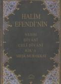 Halim Efendi'nin Nesih - Divani - Celi Divani - Rik'a - Meşk Murakkaı