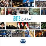 Almanac 2013