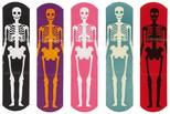 Npw Yara Bandı Funny Bones W6490