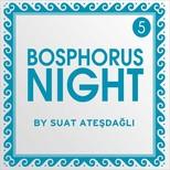 Bosphorus Night 5 by Suat Ateşdağlı SERİ