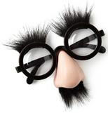 NPW Joke Shop Geek Glasses / Yüz Parti Aksesuarı W8951