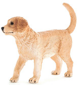 Animal Planet Evcil Hayvanlar Golden Retriewer Yavrusu Small 387205
