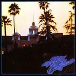 Hotel California (180 Gr.)