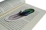 Istisna-KtpAyr.Funny Bookmarks-Kus Tüyü
