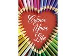 Educa-Puz.500 Colour Your Life17081