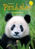 Pandalar-İlk Okuma