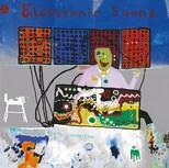 Electronic Sound Plak