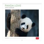 Legami Takvim Panda Love 30x29 2018