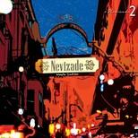 Nevizade Mey'le Şarkılar 2 Plak