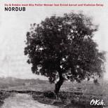 Nordub 2LP Plak