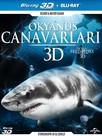 Ocean Predators - Okyanus Canavarlari