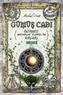 Gümüş Cadı-Ölümsüz Nicholas Flamel'in Sırları 6.Kitap
