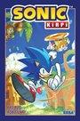 Sonic Kirpi Başıboş Robotlar