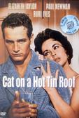Cat On A Hot Tin Roof - Kızgın Damdaki Kedi
