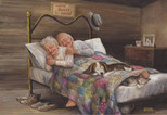 Ev Gibisi Yok / No Place Like Home 3541 500 Parça Puzzle