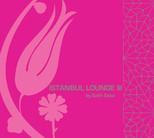 İstanbul Lounge 3 by Salih Saka SERİ