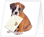 Giller Köpek Özel Gün Kartı