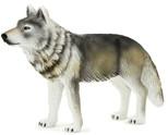 Animal Planet Doga (Agaçlik / Orman) Boz Kurt Ayakta Medium 387025
