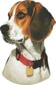 Dekoratif Cam Takısı Köpek