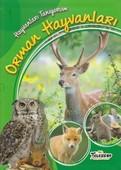 Hayvanları Tanıyorum-Orman Hayvanları