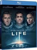 Life-Hayat