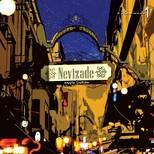 Nevizade Mey'le Şarkılar 1 Plak