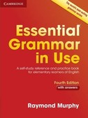 Essential Grammar in Use Fourth edi