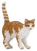 Papo-Figür Kırmızı Kedi (54031)