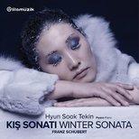 Schubert: Kış Sonatı