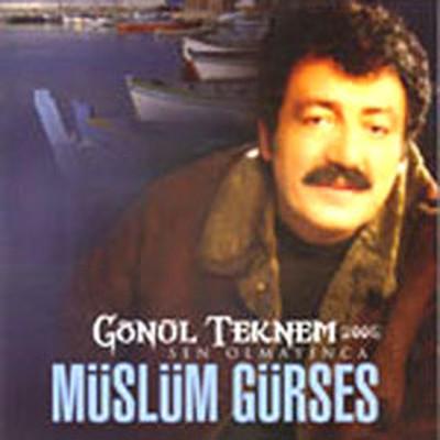 Gönül Teknem (2006) Sen Olmayınca