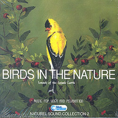 Birds In The Nature
