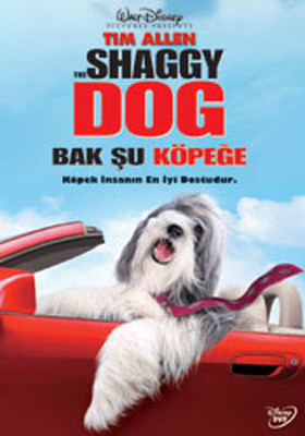 Shaggy Dog - Bak Su Köpege
