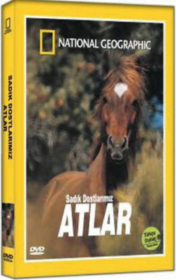 National Geographic - Atlar - Sadik Dostlarimiz