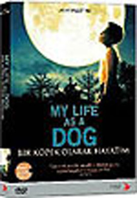 My Life As A Dog - Bir Köpek Olarak Hayatim