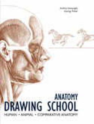 Anatomy Drawing School