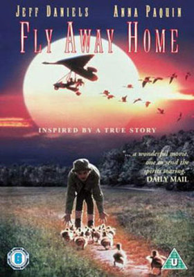 Fly Away Home - Eve Uçuş