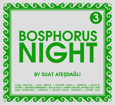 Bosphorus Night 3 by Suat Atesdagli SERI
