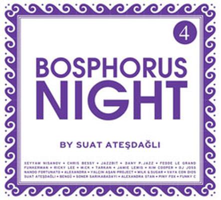 Bosphorus Night 4 by Suat Atesdagli SERI