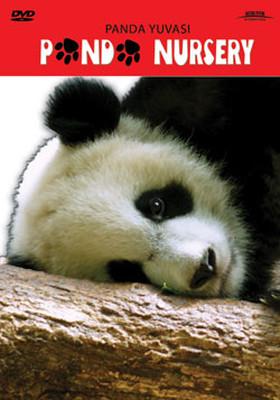 Panda Nursery - Panda Yuvası