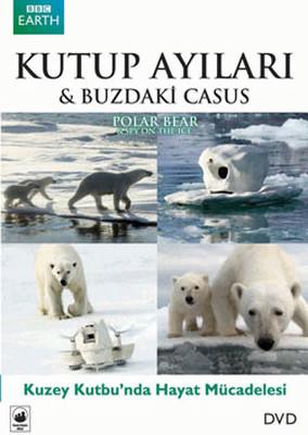Polar Bear: Spy On The Ice - Kutup Ayıları: Buzdaki Casus