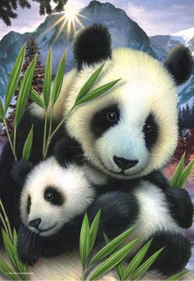 Panda 3287 260 Parça Puzzle