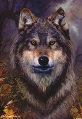 Anatolian Kurt / Wolf 3547 500 Parça