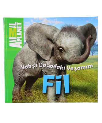 Animal Planet Doğadaki Vahşi Yaşamım Fil