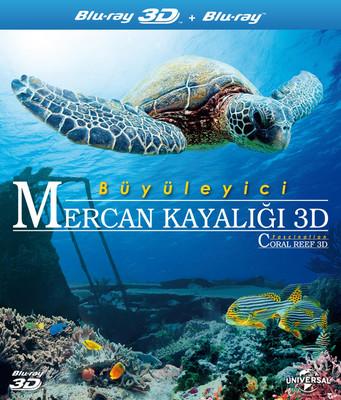 Büyüleyici Mercan Kayalığı 3D