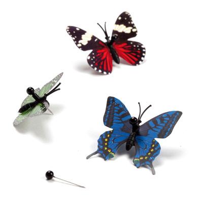 Kelebek Koleksiyonu - Mantar Pano İğnesi Seti - 9'lu Set MB275