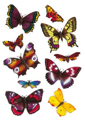 Herma Çocuk Etiketleri Renkli Kelebekler 6388